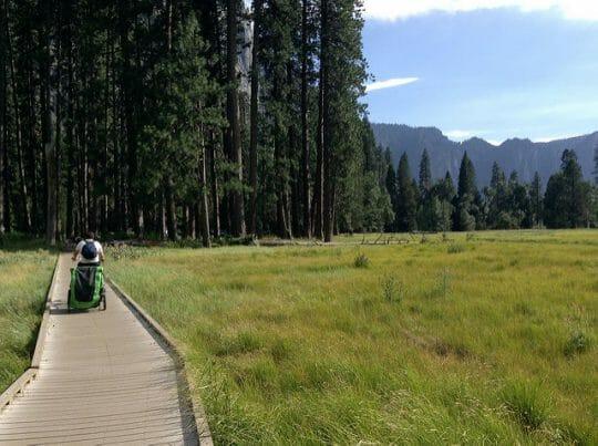 Exploring Yosemite with Kids