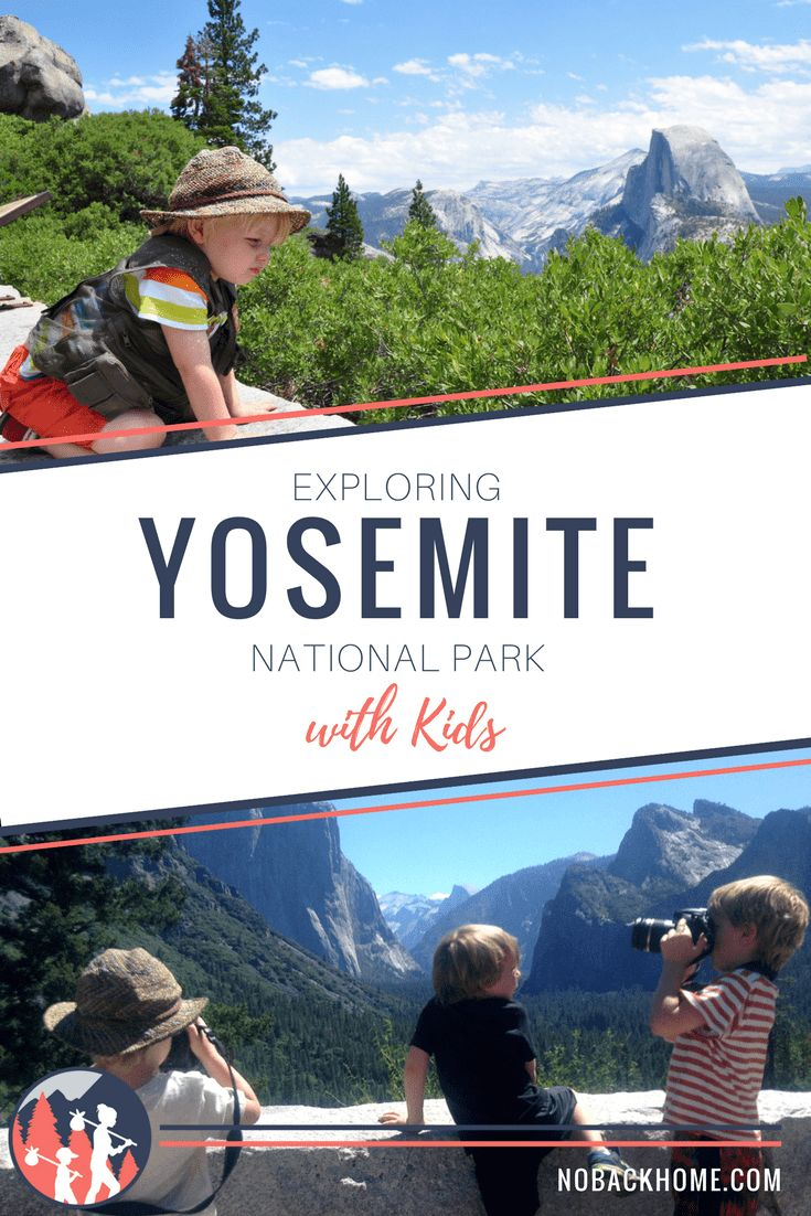 The Yosemite Adventure of Spotty Bat