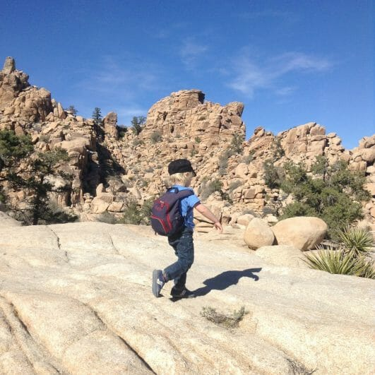 Exploring Joshua Tree with Kids