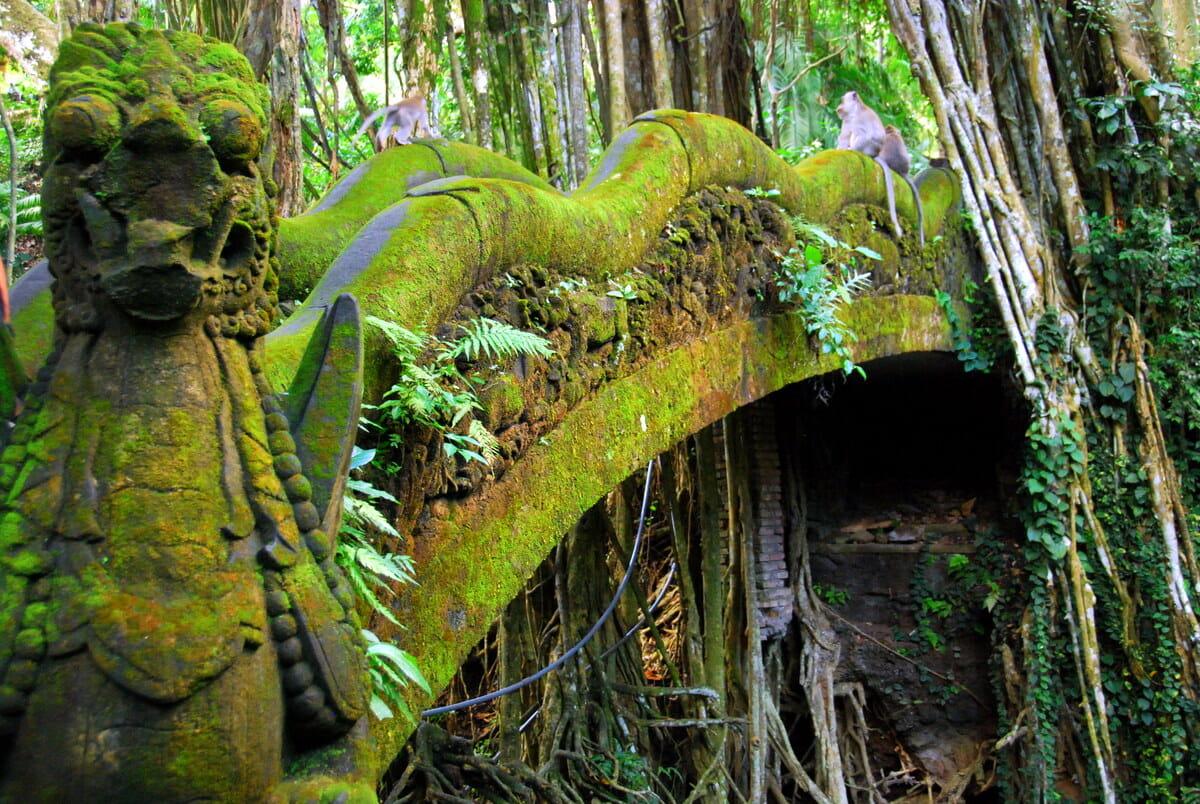 Travel Memories: Ubud