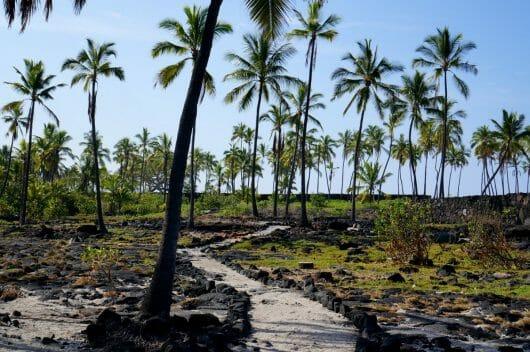 Hawaiian Culture, Big Island