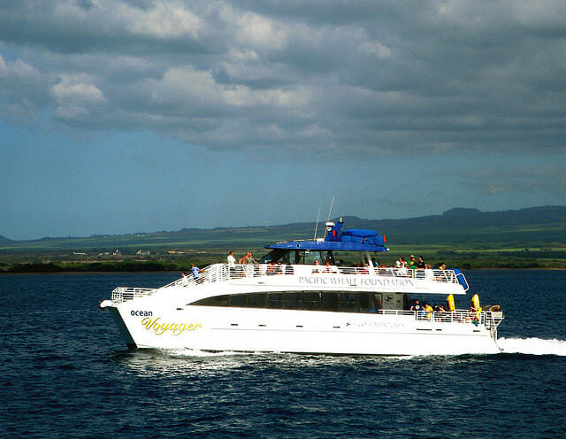 Things to Do in Hawaii Big Island - take a boat excursion