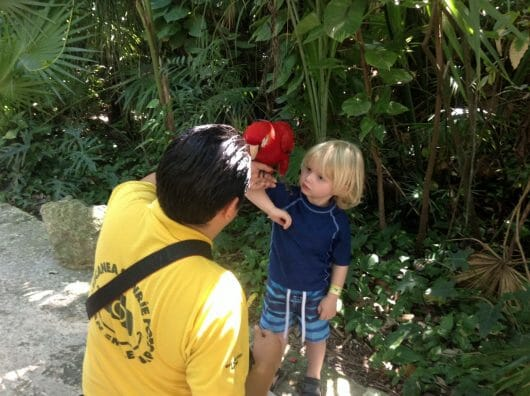 Xcaret, Top Tips for Family Fun