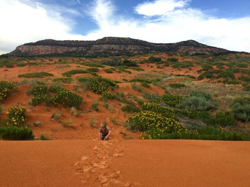 Coral Pink Sand Dunes State Park - Arizona and Utah Grand Canyon Road Trip