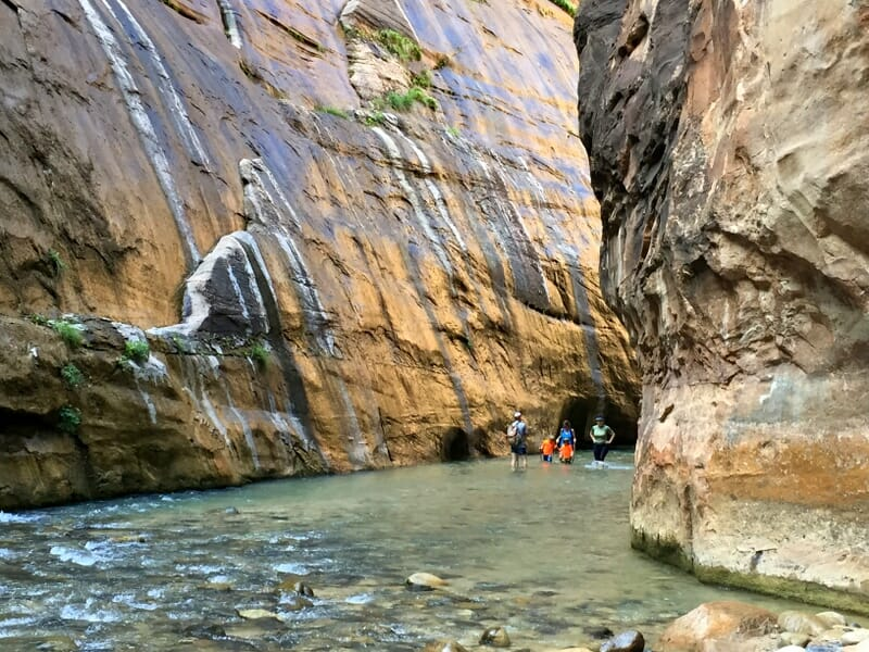 5 Things You Must Know For The Zion Narrows Hike