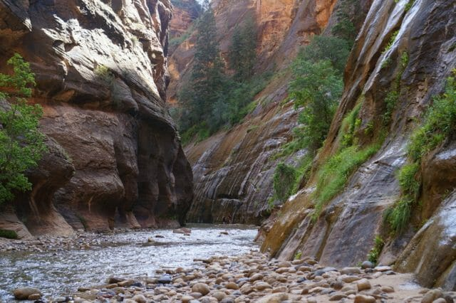 Zion Narrows Hike with Kids