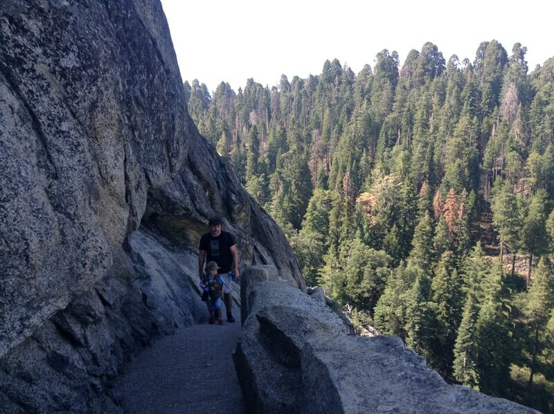 Things to do in Sequoia National Park in One Day - hiking Moro Rock