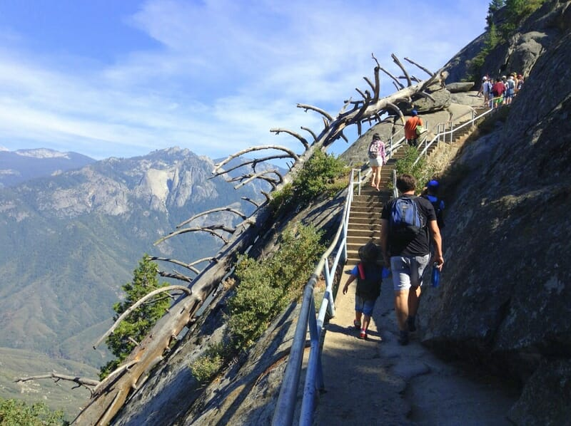 What to do in Sequoia National Park in One Day - Hike up Moro Rock