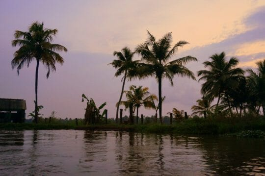 Sunset on the Backwaters - Kerala with Kids