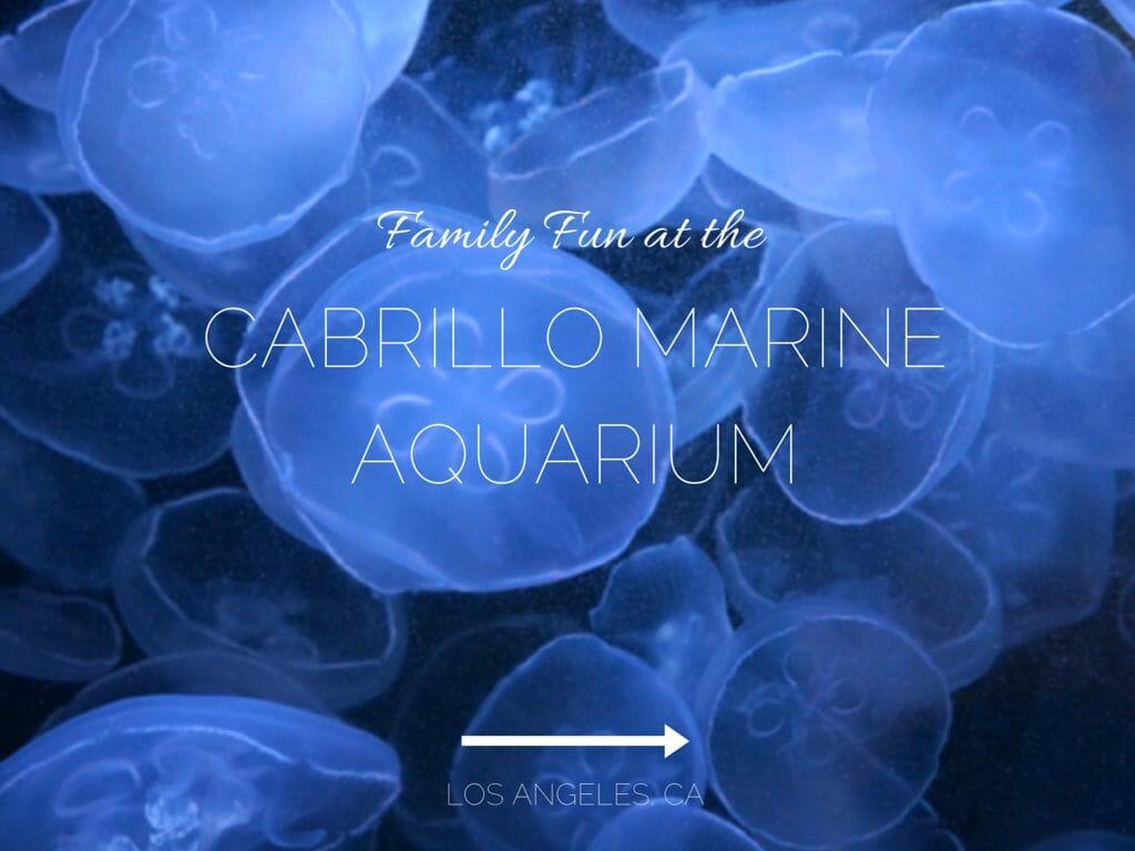 Family Day At The Cabrillo Marine Aquarium In San Pedro