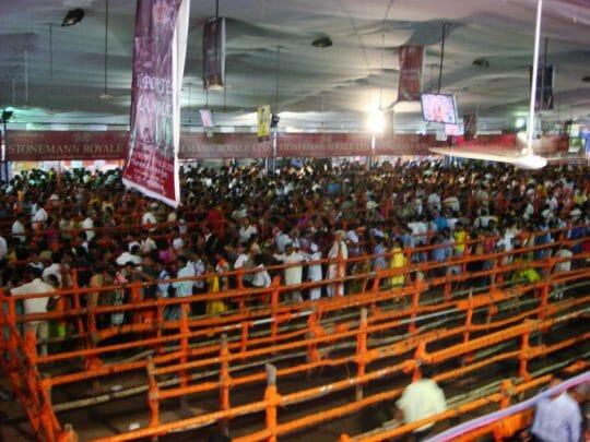 Celebrating Ganapti in Mumbai