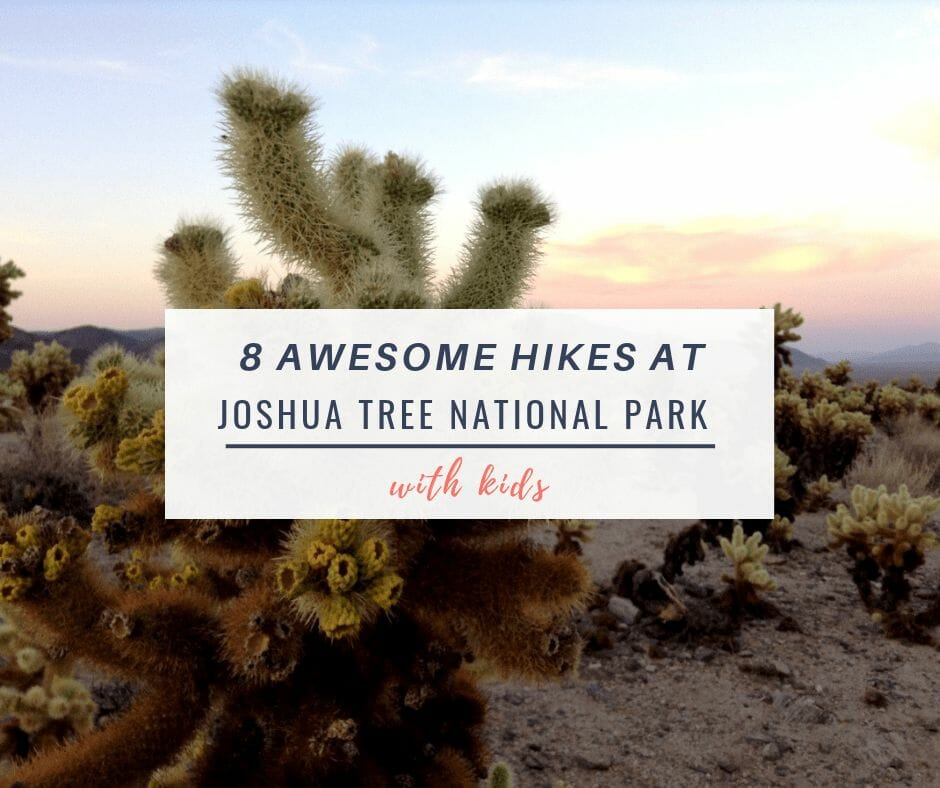 8 Awesome Joshua Tree Hikes At Joshua Tree National Park