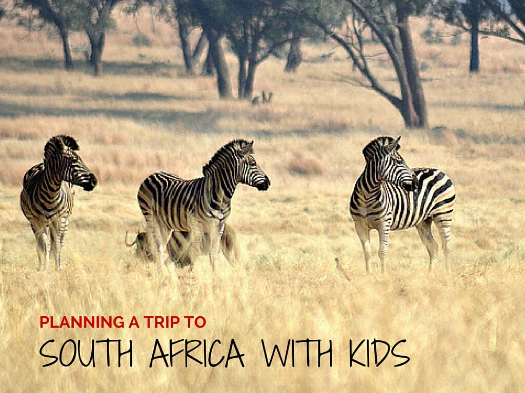 Planning A Trip To South Africa With Kids