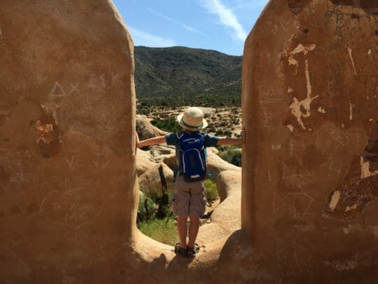 Things to do in Joshua Tree with Kids