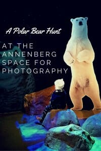 A polar bear hunt (exhbit) at the Annenberg Space for Photography
