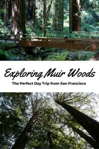 Exploring Muir Woods with (or without) kids is the perfect day trip from San Francisco.