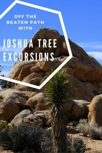 Test your limits, challenge yourself and get off the beaten path with Joshua Tree Excursions
