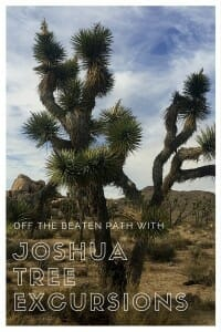 Test your limits, be challenged and get off the beaten path in Joshua Tree with Joshua Tree Excursions.