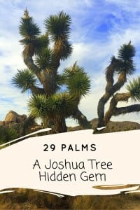 29 Palms, CA is an eclectic artistic hub, often overlooked while visiting Joshua Tree