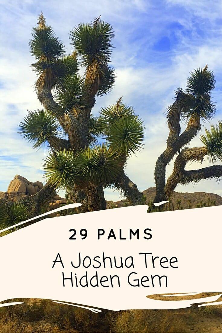 29 Palms: A Joshua Tree Hidden Gem - No Back Home