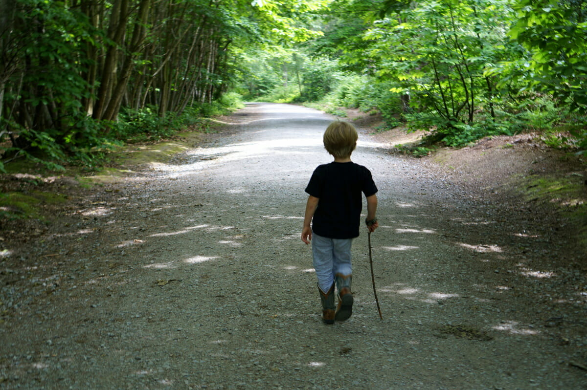 England's Outdoor Secret – Adventure Play Forests
