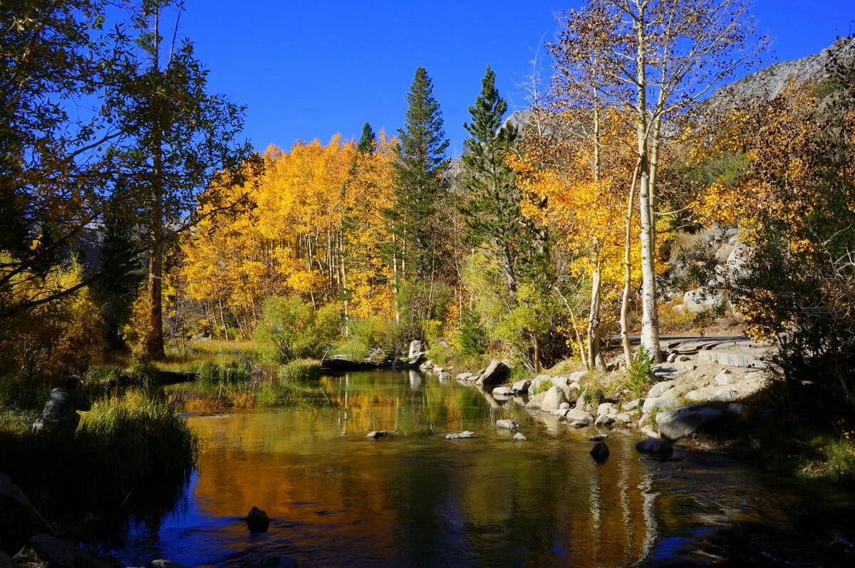 Finding Fall Colors In Bishop, California