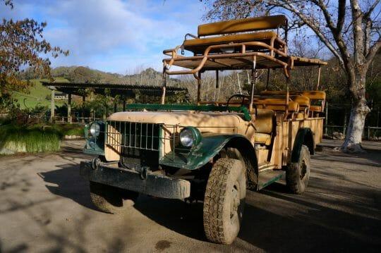 Go on Safari in Santa Rosa, California