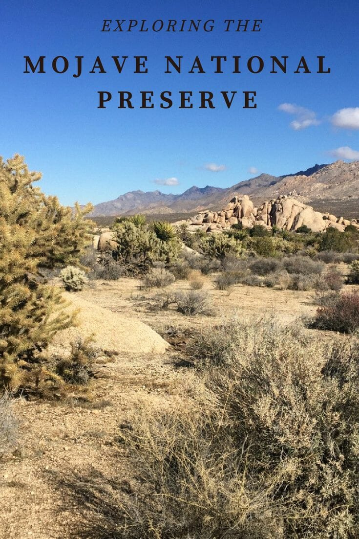 Exploring the Mojave National Preserve - No Back Home