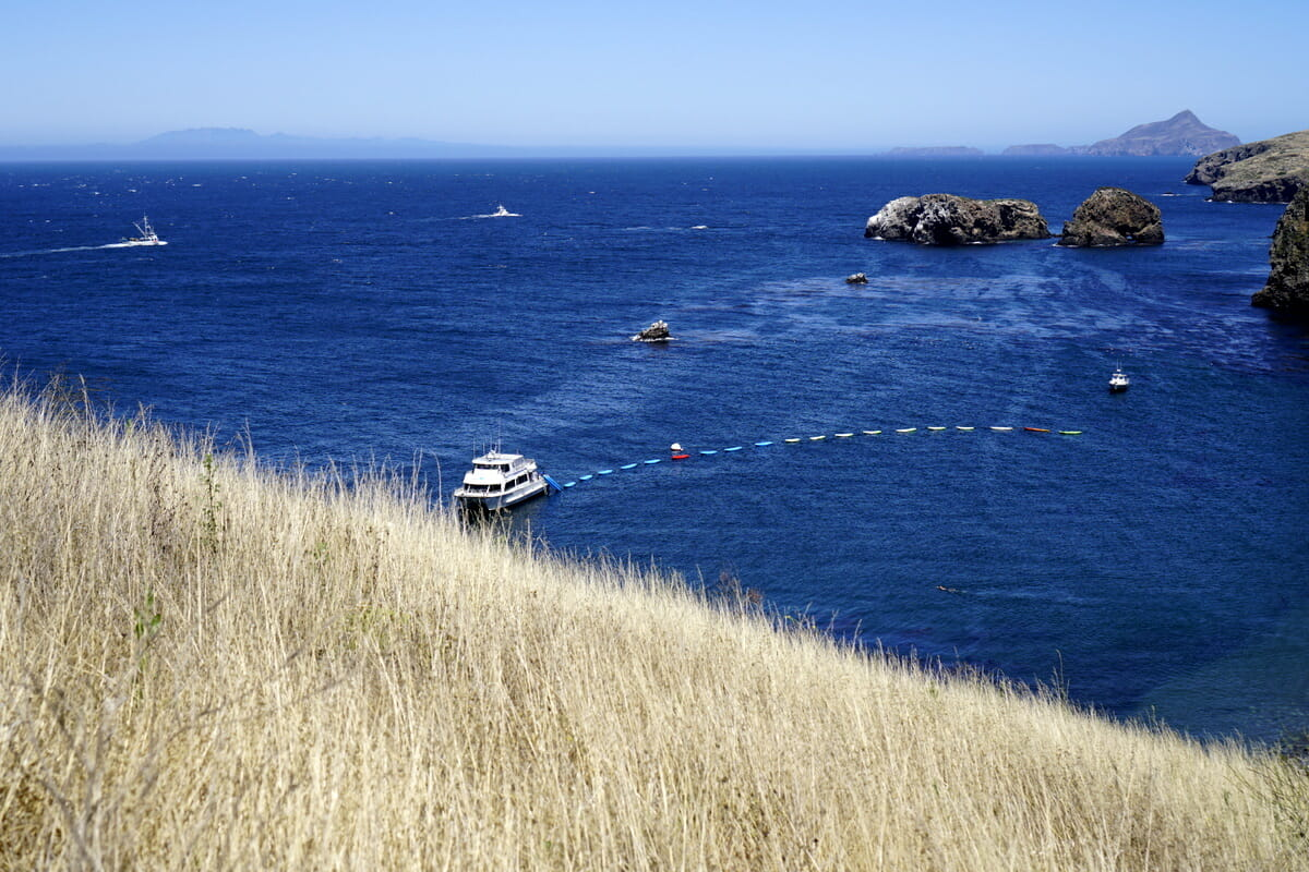 Guide To Channel Islands National Park (with Kids)