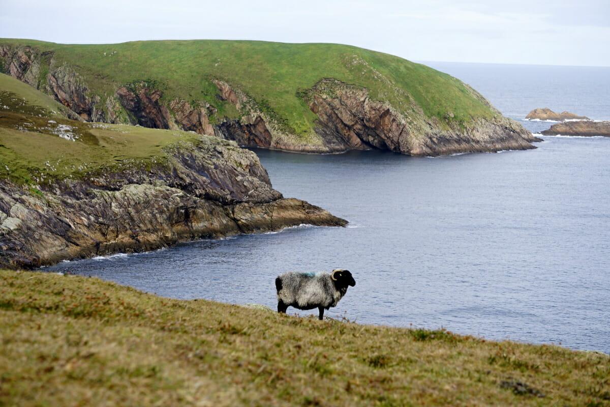 Explore County Mayo Ireland On The Wild Atlantic Way
