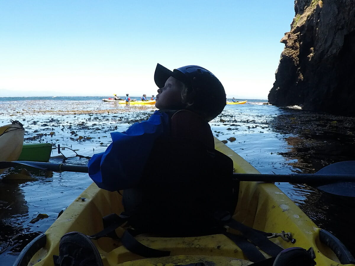 A Family Adventure: Channel Islands Kayaking With Kids