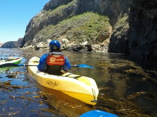 Channel Islands Kayaking tour is a great way to learn about the park and it's inhabitants