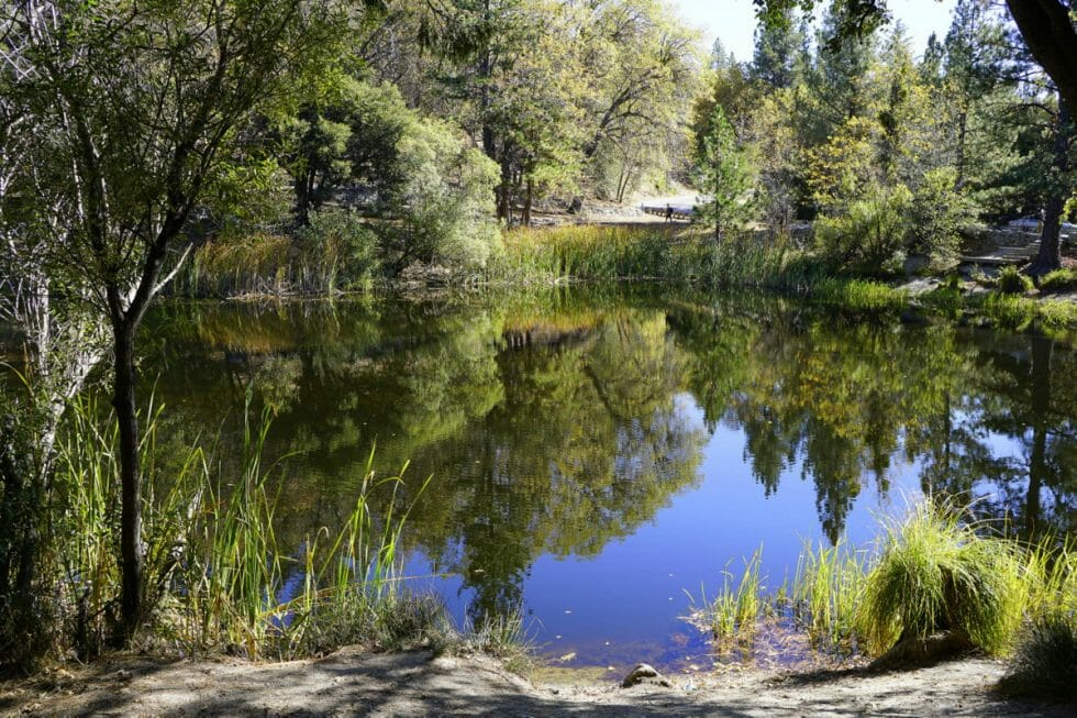 Lake Fulmor in Idyllwild