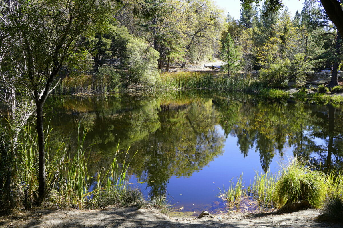 Idyllwild Camping, Glamping & Fun Things To Do