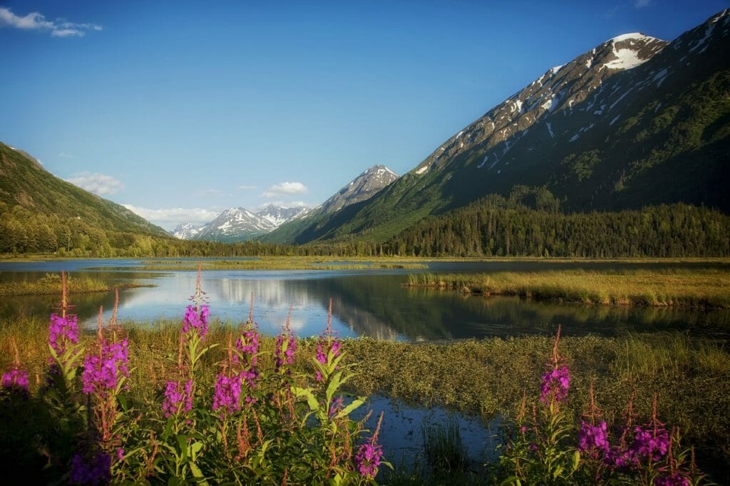 Top Stops For Your Alaska Road Trip Itinerary