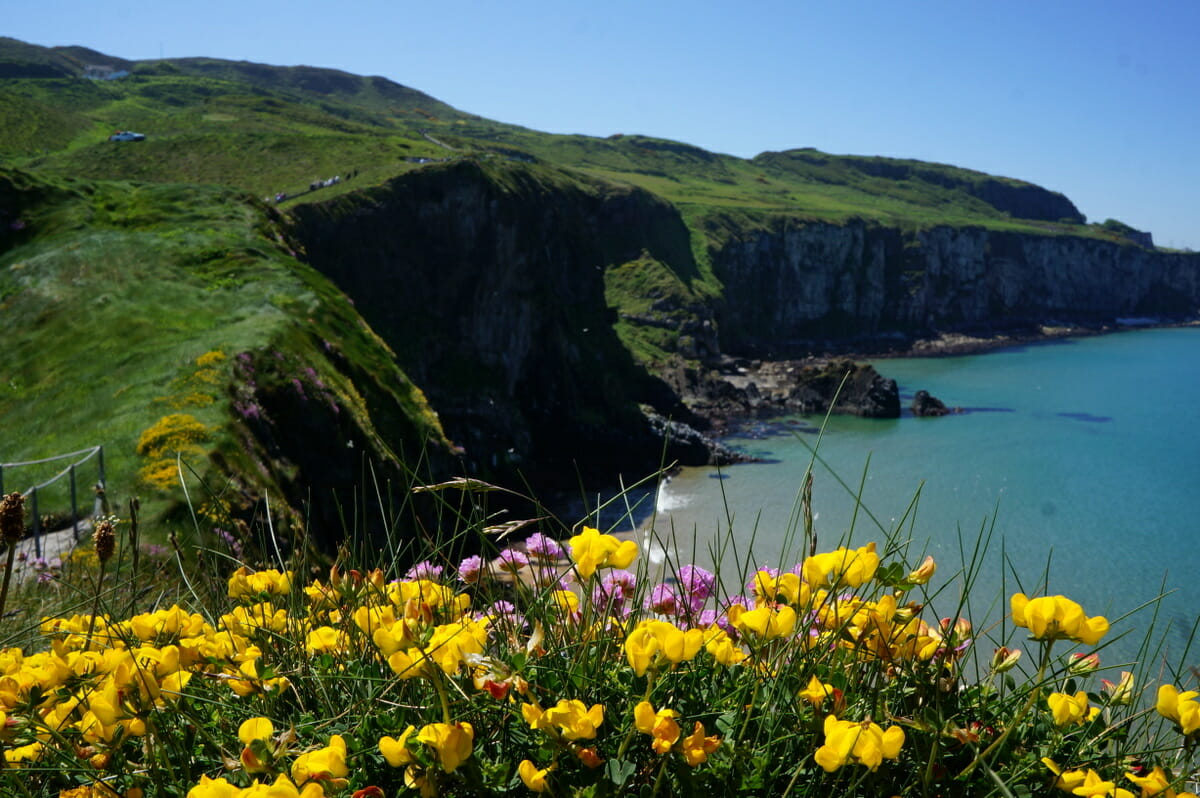 Guide To Planning A Trip To Ireland