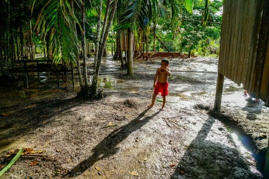 Amazon Rainforest with kids