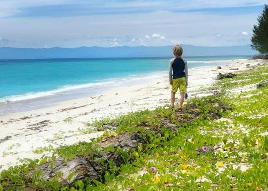 Eco Warrior in training looking to create a life of zero waste travel