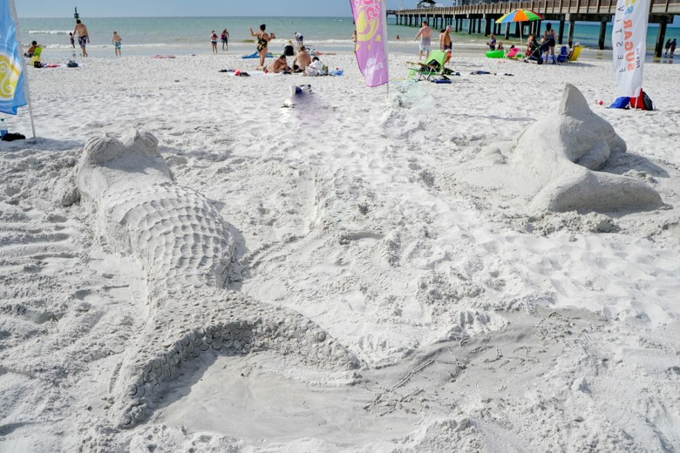 Things to do in Clearwater Florida - Attend Sugar Sand Festival at the beach
