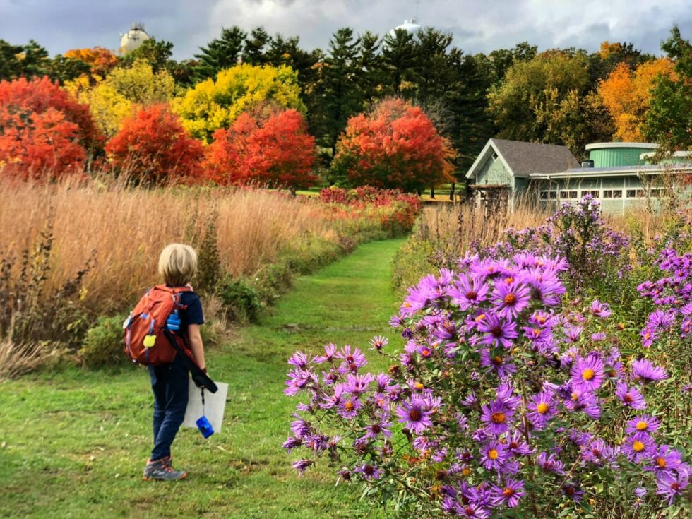 Things to do in Madison with Kids - Nature Center