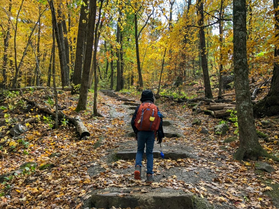 Soak up Nature at the Devils Lake State Park