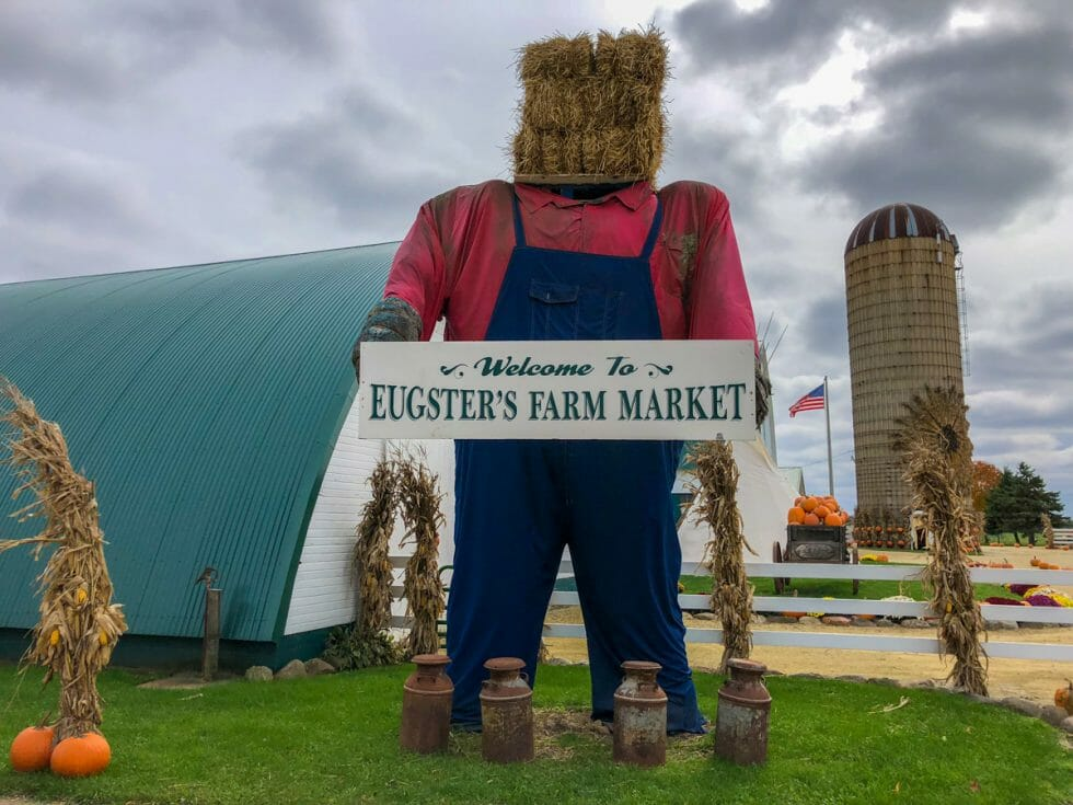 If you visit in the Fall there are lots of fun things to do in Madison with kids like visit a farm