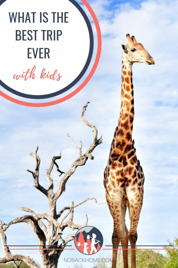 Why an African Safari is the best holiday with kids. Make an impact that will last a lifetime.