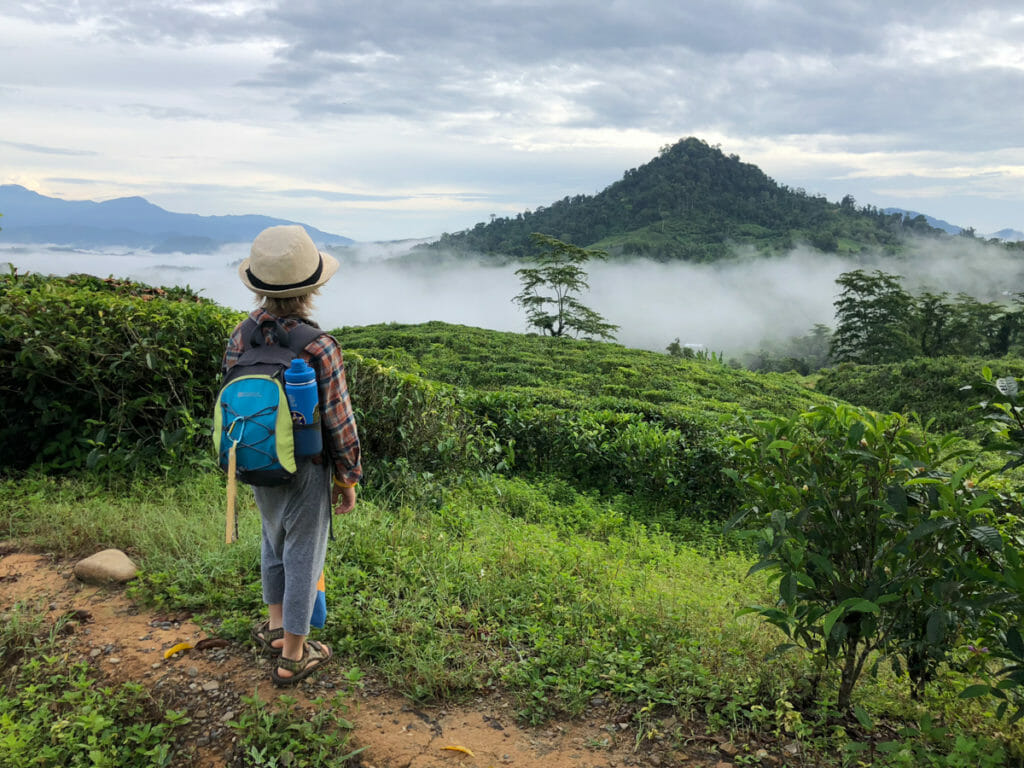 The Perfect Borneo Family Holiday with Intrepid Travel - No