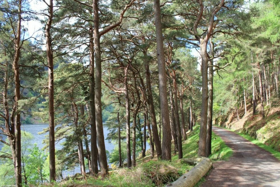 If you need some nature, head to Glendalough for some nice lakeside hiking.
